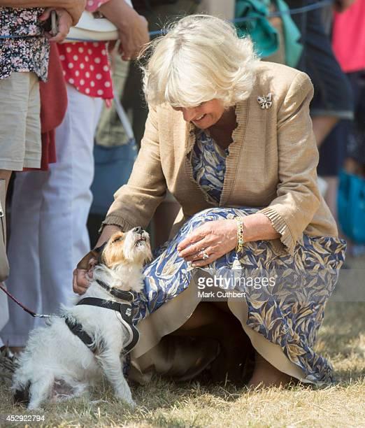 Ê Camilla Duchess of Cornwall attends the Sandringham Flower Show at Sandringham on July 29 2014 in King's Lynn EnglandÊ