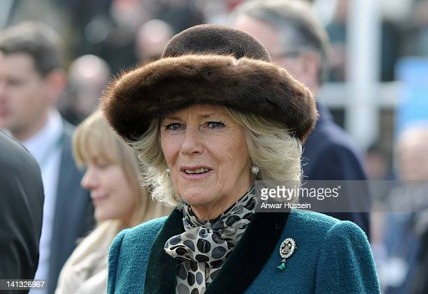 Camilla Duchess of Cornwall attends the second day of the Cheltenham Festival horse races on March 14 2012 in Cheltenham England