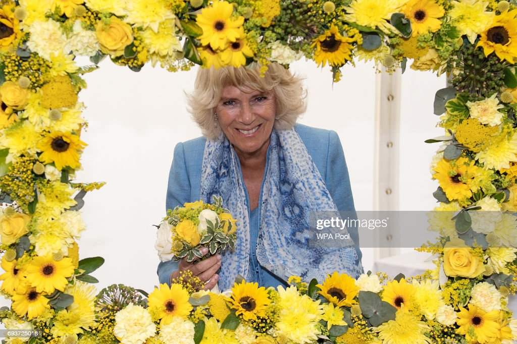 Camilla, Duchess of Cornwall attends the South of England Show on June 8, 2017 in Ardingly, United Kingdom.