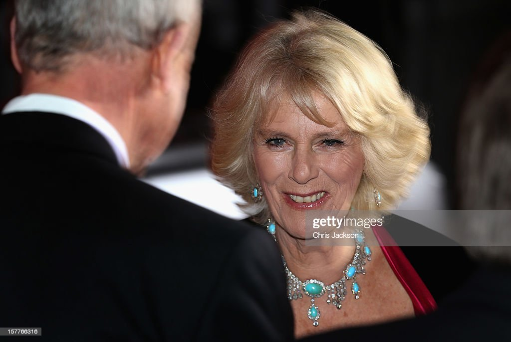 Camilla, Duchess of Cornwall attends the Sun Military Awards at the Imperial War Museum on December 6, 2012 in London, England.