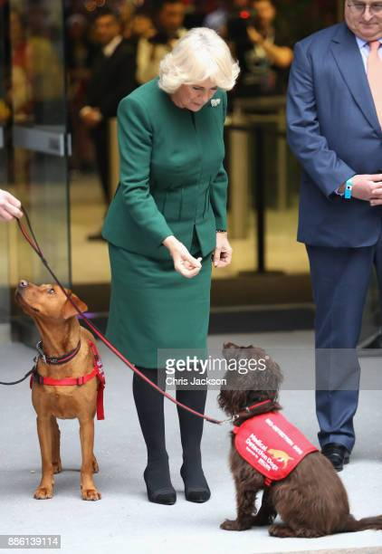 Camilla Duchess of Cornwall departs from the annual ICAP charity day at ICAP on December 5 2017 in London England