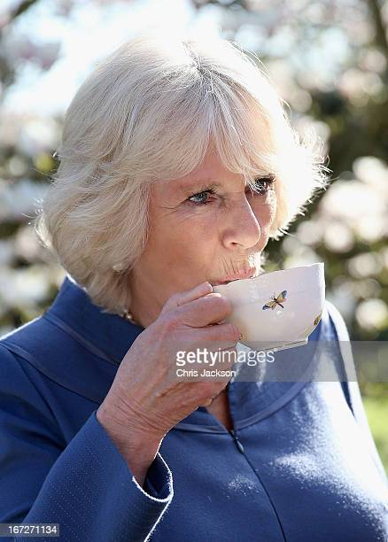 Camilla Duchess of Cornwall drinks a cup of tea in Clarence House garden as she hosts a tea party to celebrate the 5th Anniversary of the charity...
