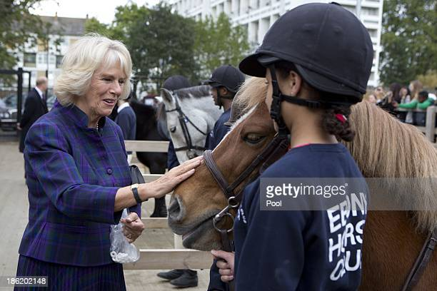 Camilla Duchess of Cornwall during a visit to Ebony Horse Club Community Riding Centre on October 29 2013 in London England