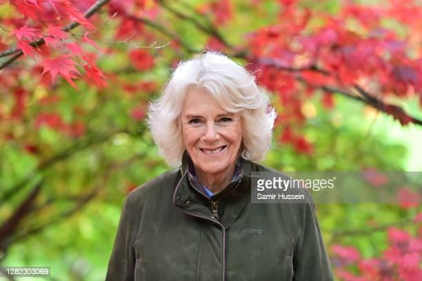Camilla, Duchess of Cornwall during a visit to Westonbirt, The National Arboretum on October 26, 2020 in Tetbury, England. The Arboretum attracts...