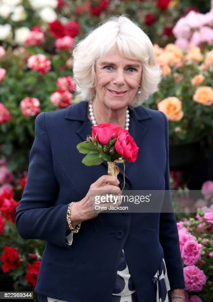 Camilla Duchess of Cornwall during an official visit to the Sandringham Flower Show at Sandringham on July 26 2017 in King's Lynn England The Prince...