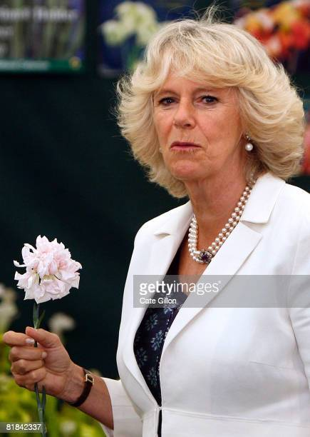 Camilla Duchess of Cornwall holds a Malmaison carnation she received during her visit to the Plant Heritage Marquee at Hampton Court Palace Flower...