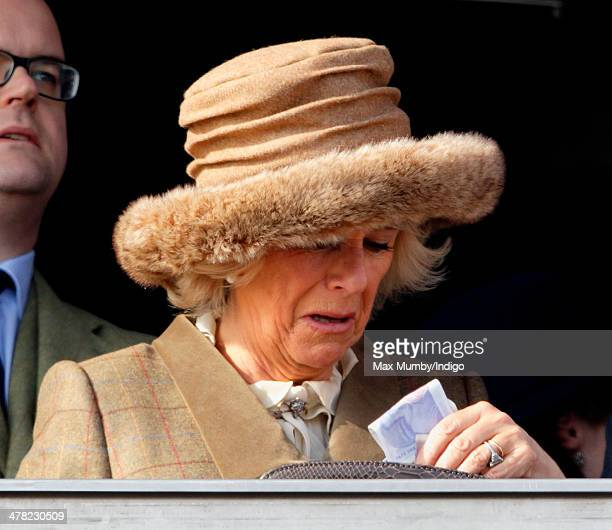 Camilla Duchess of Cornwall holds a wad of money after watching the first race as she attends Ladies Day day 2 of the Cheltenham Festival at...