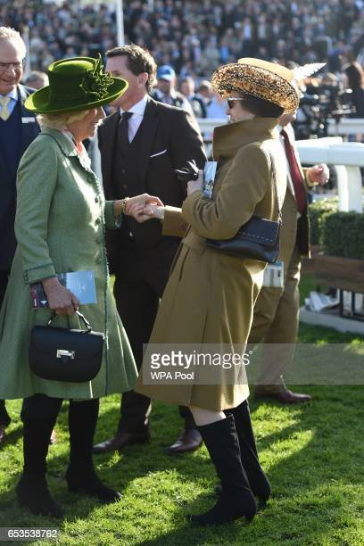 Camilla, Duchess of Cornwall, Honorary Member of the Jockey Club, speaks to Princess Anne, Princess Royal as they attend the second day of The...