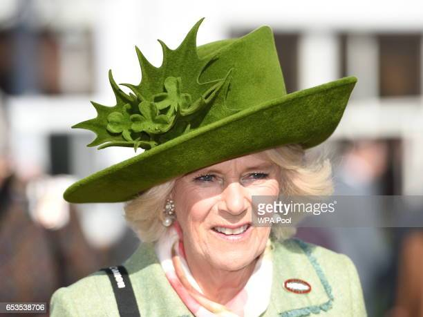 Camilla, Duchess of Cornwall, Honorary Member of the Jockey Club, attends the second day of The Festival, Ladies Day, at Cheltenham Racecourse on...