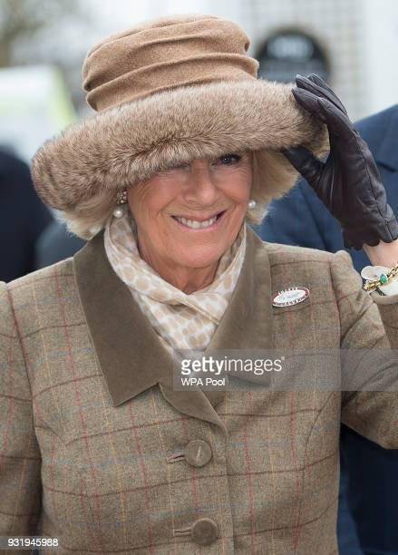 Camilla Duchess of Cornwall Honorary Member of the Jockey Club attends the second day of The Festival Ladies Day at Cheltenham Racecourse on March 14...