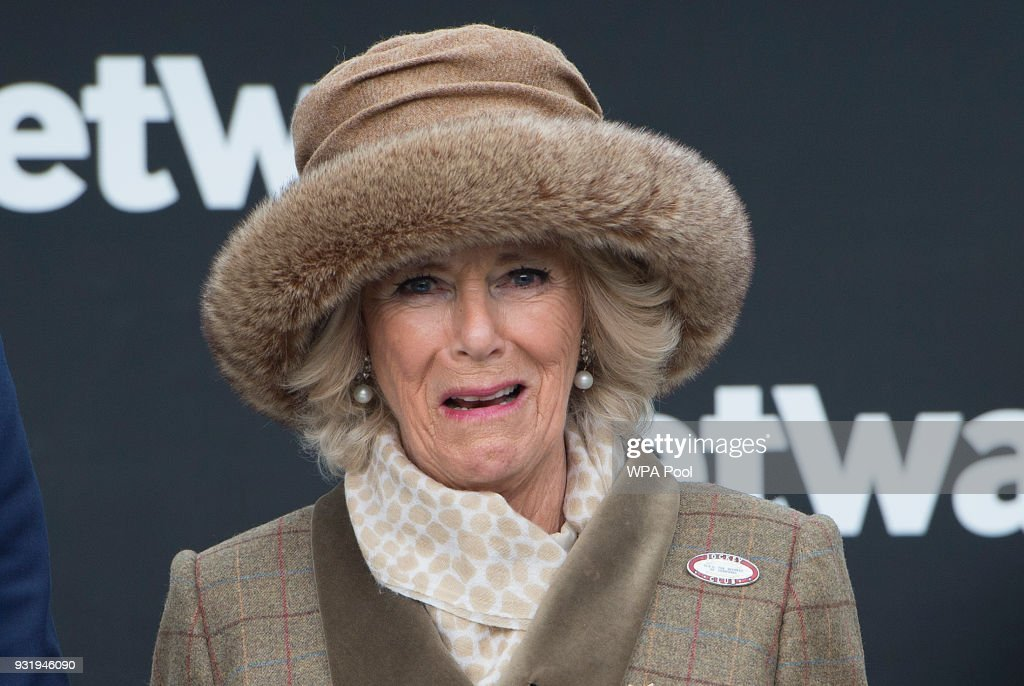 Camilla, Duchess of Cornwall Honorary Member of the Jockey Club, attends the second day of The Festival, Ladies Day at Cheltenham Racecourse on March 14, 2018 in Cheltenham, England.