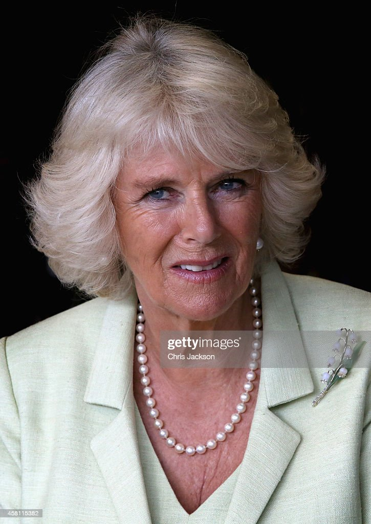 Camilla, Duchess of Cornwall in a meeting with victims and campaigners against Sexual Violence at the Peace and Reconciliation Centre on October 30, 2014 in Bogota, Colombia. The Royal Couple are on a four day visit to Colombia as part of a Royal tour to Colombia and Mexico. After fifty years of armed conflict in Colombia the theme for the visit is Peace and Reconciliation.