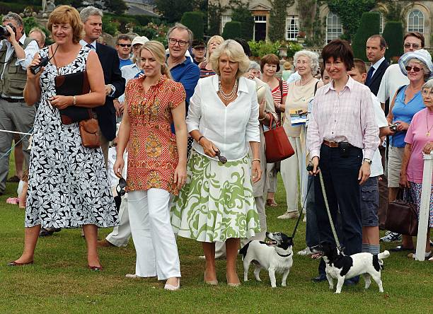 Bowood House Dog Show