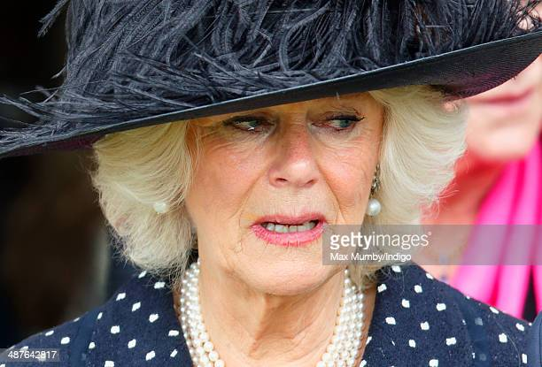 Camilla, Duchess of Cornwall leaves Holy Trinity Church, Stourpaine after attending the funeral of her brother Mark Shand on May 1, 2014 near...