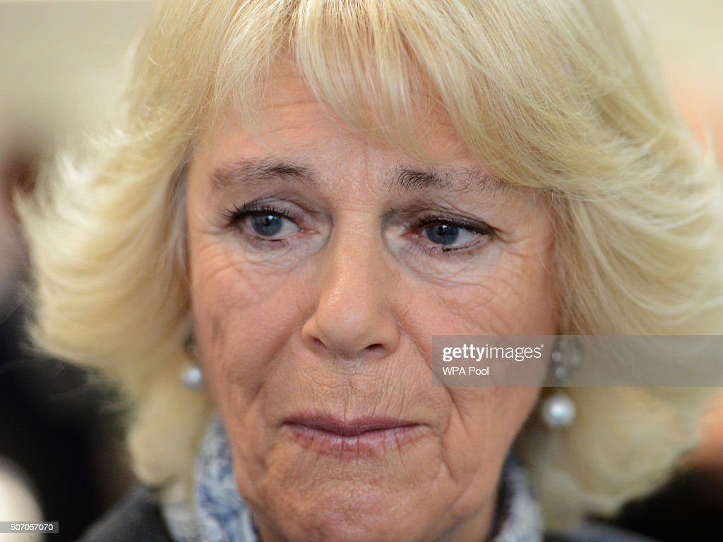 Camilla, Duchess of Cornwall listens to Diana Parkes whose daughter Joanna Brown was killed by her husband Robert at Safelives Centre on January 27, 2016 in London, England.