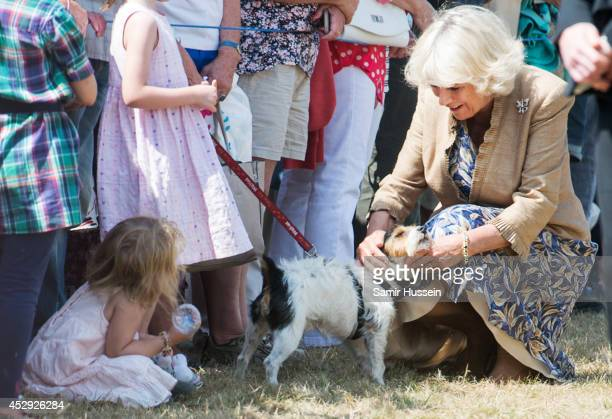 Camilla Duchess of Cornwall meets a dog and well wishers as she attends Sandringham Flower Show on July 30 2014 in Sandringham England