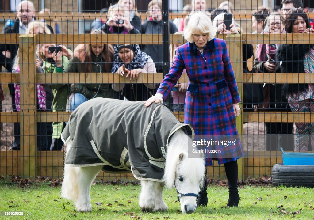 Camilla, Duchess of Cornwall meets a pony as he visits Ebony Horse Club to celebrate the club's 21st anniversary on February 16, 2017 in London, England. on February 16, 2017 in London, England.