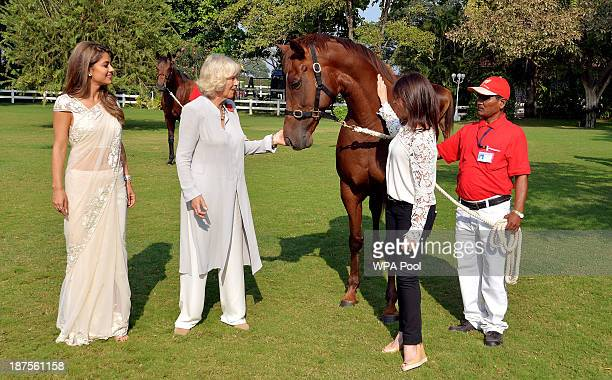 Camilla Duchess of Cornwall meets mare 'In the Spotland' with Ms Simone Poonewelle and Mrs Natashe Poonewelle at the Poonewlle Stud Farm on Day 5 of...