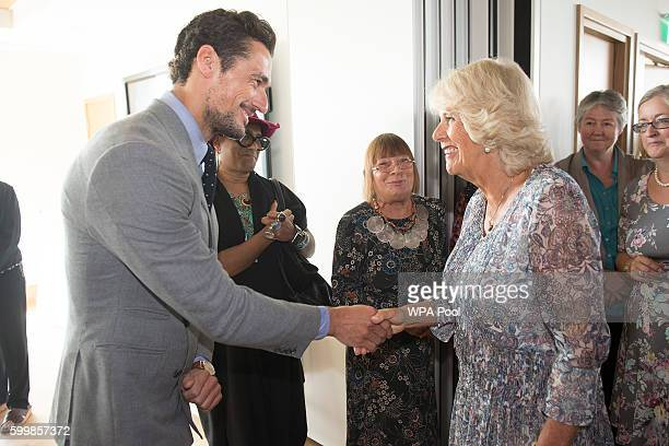 Camilla Duchess of Cornwall meets model David Gandy and Hilary Alexander during a visit to Battersea Dogs Cats Home on September 07 2016 in London...