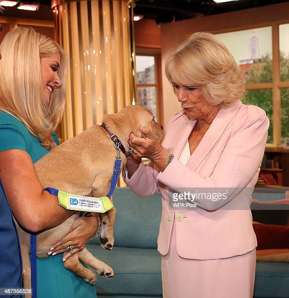 Camilla Duchess of Cornwall meets 'This Morning' presenter Holly Willoughby and puppy 'Clover' as she visits ITV Studios to mark their 60th...
