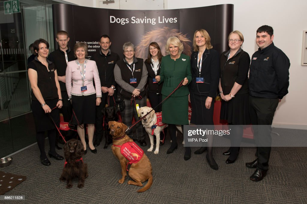 Camilla, Duchess of Cornwall, Patron, Medical Detection Dogs, meets staff and charity representatives during her visit to ICAP during the broker's annual ICAP charity day at ICAP on December 5, 2017 in London, England.