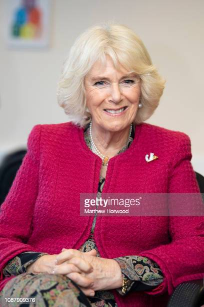Camilla, Duchess of Cornwall, Patron of the National Literacy Trust, smiles during a visit to the Lyndhurst Centre where she met foster carers and...