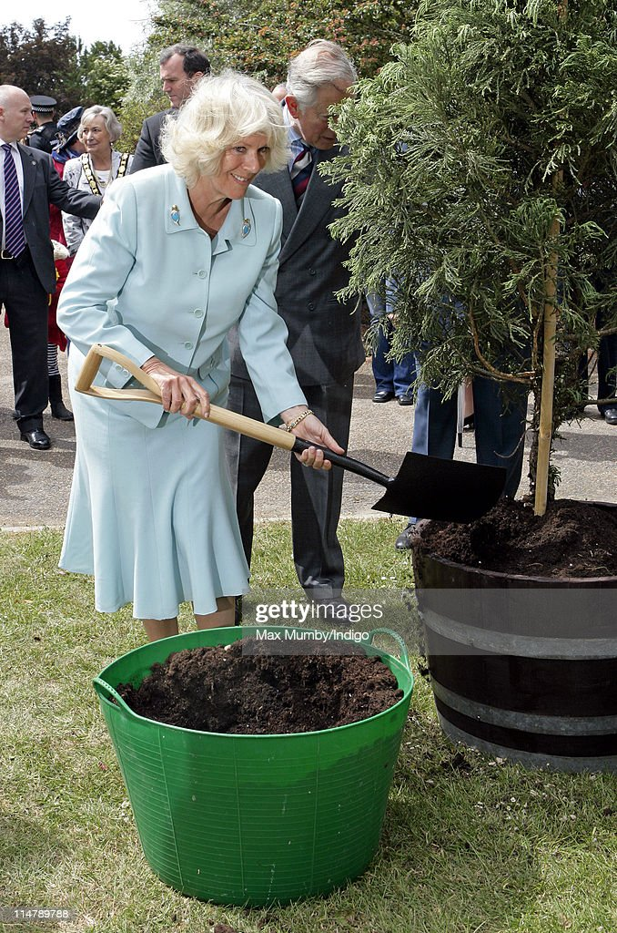 Camilla, Duchess of Cornwall plants a tree during a visit to Denbies Wine Estate on May 26, 2011 in Dorking, England.