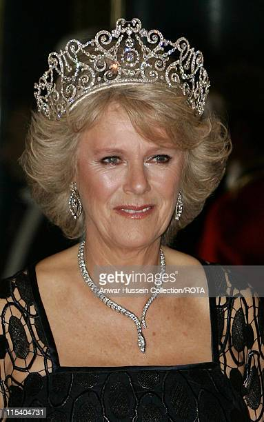 Camilla Duchess of Cornwall poses before the banquet for the Norwegian Royal Family at Buckingham Palace on October 25 2005 in London England The...