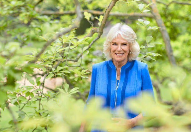 GBR: Official Portrait Of The Duchess Of Cornwall To Mark HRH's 73rd Birthday