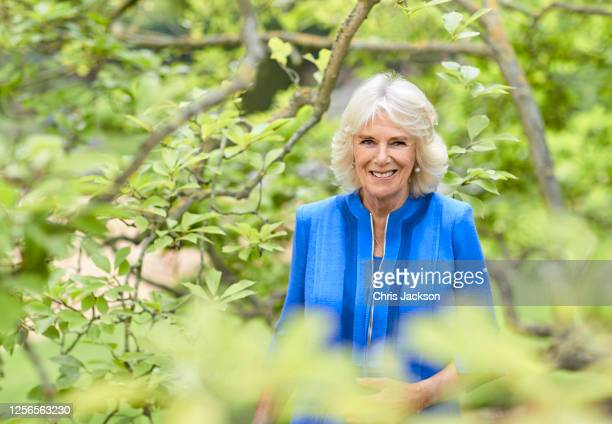 Camilla Duchess of Cornwall poses for an official portrait in the gardens of Clarence House to mark HRH's 73rd birthday wearing a blue silk linen...