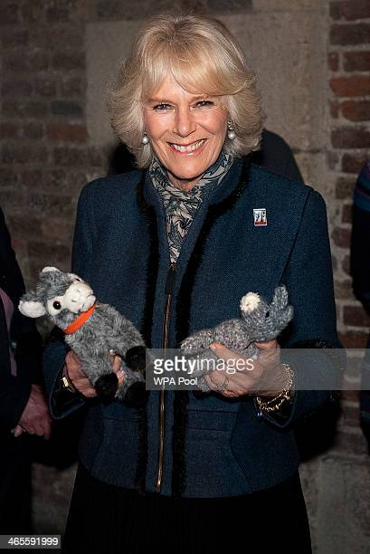 Camilla Duchess of Cornwall president of the Brooke visits the 'The Brooke through a lens' photography exhibition to mark the 80th Anniversary of the...