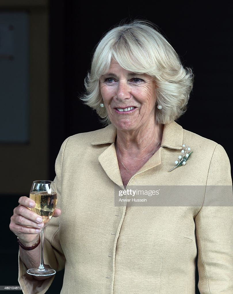 The Prince Of Wales & Duchess Of Cornwall Visit Wales : News Photo