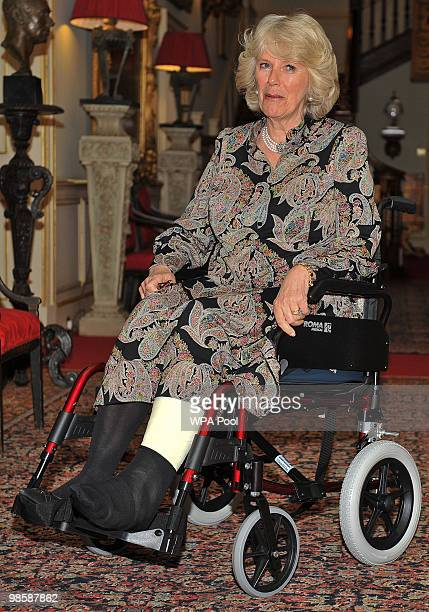 Camilla Duchess of Cornwall sits in her wheelchair while hosting a reception at Clarence House on April 21 in London England The Duchess who broke...