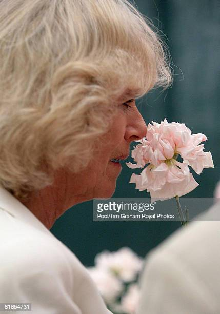 Camilla Duchess of Cornwall smells a malmaison carnation from the Marshalls Malmaisons stand during a visit to the RHS Hampton Court Flower Show...