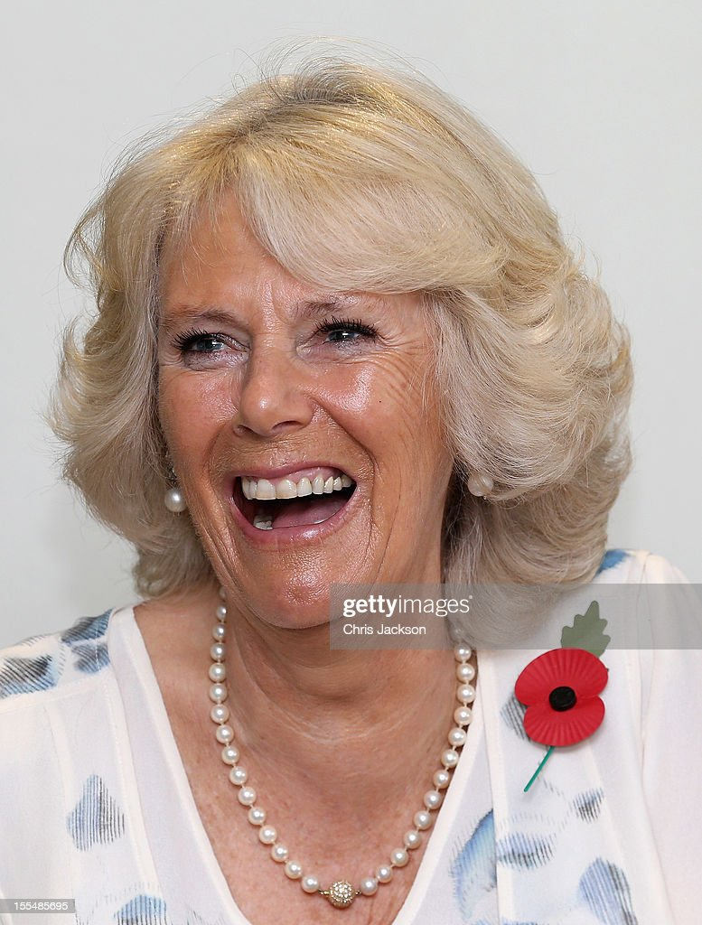 Camilla, Duchess of Cornwall smiles as she chats to Kokoda Campaign veterans during a reception for Kokoda Veterans on the 70th Anniversary of the Australian battle against to Japanese at the Airways Hotel on November 4, 2012 in Port Moresby, Papua New Guinea. The Royal couple are in Papua New Guinea on the first leg of a Diamond Jubilee Tour taking in Papua New Guinea, Australia and New Zealand.