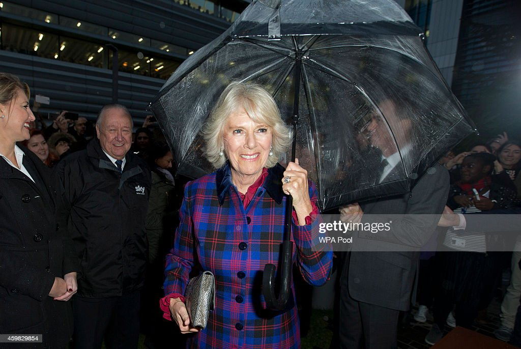 Camilla, Duchess of Cornwall smiles as she greets Sky employees during a visit to Sky on December 2, 2014 in London, England.