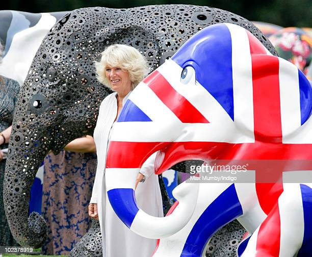 Camilla Duchess of Cornwall stands alongside an elephant decorated as a Union Jack flag as she visits the Elephant Parade at The Royal Hospital...