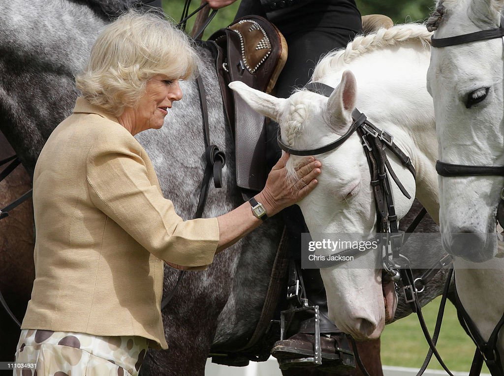 Camilla, Duchess of Cornwall strokes a horse as she visits Lisbon Jockey Club on day two of a two day visit to Portugal on March 29, 2011 in Lisbon, Portugal. Camilla, Duchess of Cornwall, and Prince Charles, Prince of Wales, are on a two day trip to Portugal as part of a tour to Portugal, Spain and Morroco.