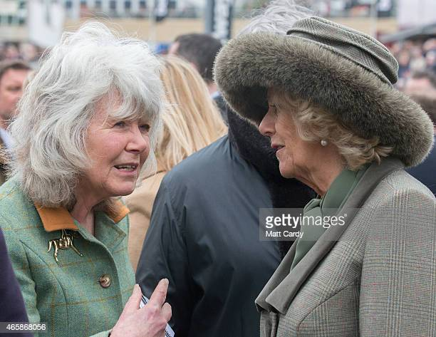 Camilla Duchess of Cornwall talks to Jilly Cooper as they look at horses in the paddock on the second day of the Cheltenham Festival on March 11 2015...
