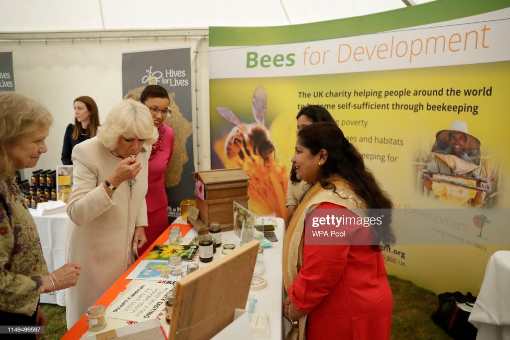 The Duchess Of Cornwall Attends The Bees For Development Garden Party : News Photo