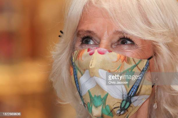 Camilla, Duchess of Cornwall viewing the Raphael Cartoons in the Raphael Court at The V&A on June 09, 2021 in London, England. 'On Point: Royal...