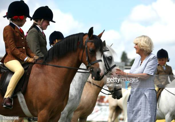 Camilla, Duchess of Cornwall views horses as she visits the Royal Welsh Show at Royal Wales Showground on July 24, 2013 in Builth Wells, Wales.
