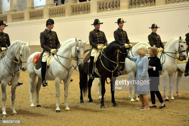 Camilla Duchess of Cornwall views the horses during her visit to the Spanish Riding School in Vienna during the second day of her visit to Austria on...