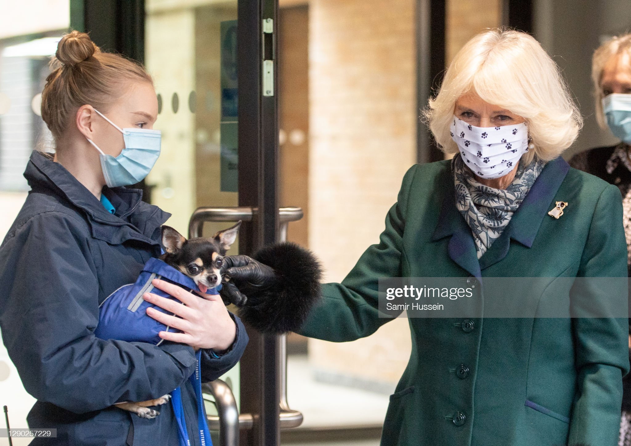 camilla-duchess-of-cornwall-visits-battersea-dogs-home-in-windsor-on-picture-id1290257229