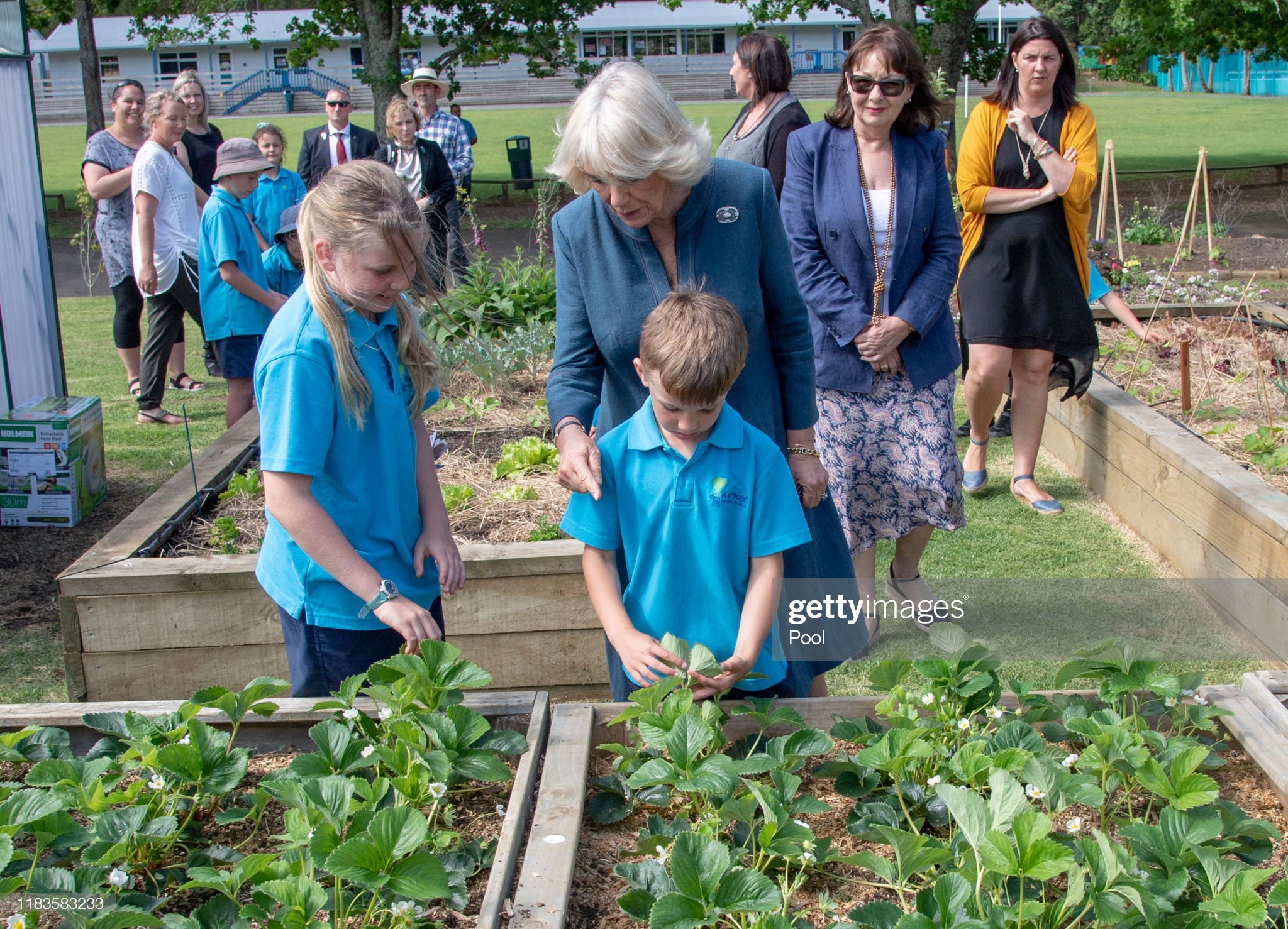 CASA REAL BRITÁNICA - Página 75 Camilla-duchess-of-cornwall-visits-kerikeri-primary-school-on-20-in-picture-id1183583233?s=2048x2048