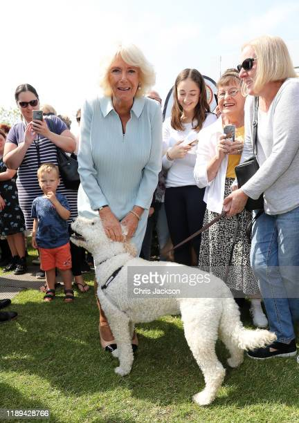 Camilla, Duchess of Cornwall visits Lincoln Farmer's and Craft Market on November 23, 2019 in Christchurch, New Zealand. The Prince of Wales and...