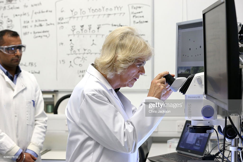 The Duchess Of Cornwall Is Awarded An Honourary Doctorate By The University Of Southampton : News Photo