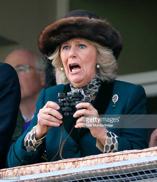 Camilla, Duchess of Cornwall watches the 'Queen Mother Champion Steeple Chase' horse race on day 2 'Ladies Day' of the Cheltenham Horse Racing...