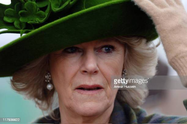 Camilla, Duchess of Cornwall, wears a St Patrick's Day themed hat designed by Philip Treacy at Gold Cup Day at Cheltenham Races on March 17, 2006.