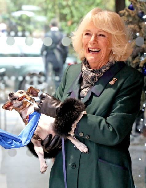 GBR: The Duchess Of Cornwall Visits Battersea Dogs Home In Windsor